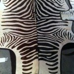 The African Market Trophy Room collection zebra rug